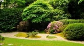 Allestimento giardino N1